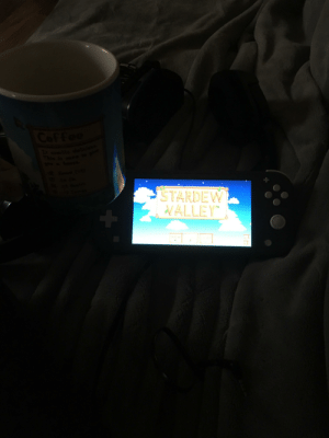 Great combination :) I got my new stardew valley coffee cup! I am sorry for the picture quality. It is dark in the room and cloudy outside: Great combination :) I got my new stardew valley coffee cup! I am sorry for the picture quality. It is dark in the room and cloudy outside