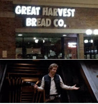 Bread, I Know, and Great: GREAT HARVEST  BREAD CO. I know