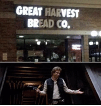 Bread, Great, and Well: GREAT HARVEST  BREAD CO. Well thanks