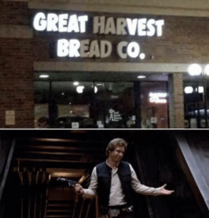 Dank, Memes, and Target: GREAT HARVEST  BREAD CO. Well thanks by joshuadavis151 MORE MEMES