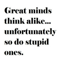 Great Minds Think Alike: Great minds  think alike...  unfortunately  so do stupid  Ones.