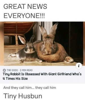 He's my hunbun: GREAT NEWS  EVERYONE!!!  THE DODO 2 MIN READ  Tiny Rabbit Is Obsessed With Giant Girlfriend Who's  4 Times His Size  And they call him... they call him  Tiny Husbun He's my hunbun
