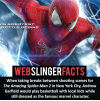 Memes, Spider, and Deadpool: GREATEST  JIS GGINTS  WEB  SLINGER  FACTS  When taking breaks between shooting scenes for  The Amazing Spider-Man 2 in New York City, Andrew  Garfield would play basketball with local kids while  still dressed as the famous marvel character. ▲▲ - Would you like to see Tobey and Andrew have a cameo in Homecoming? - My other IG accounts @factsofflash @yourpoketrivia @facts_of_heroes ⠀⠀⠀⠀⠀⠀⠀⠀⠀⠀⠀⠀⠀⠀⠀⠀⠀⠀⠀⠀⠀⠀⠀⠀⠀⠀⠀⠀⠀⠀⠀⠀⠀⠀⠀⠀ ⠀⠀----------------------- spiderman peterparker tomholland marvelfacts spidermanfacts webslingerfacts venom carnage avengers xmen justiceleague marvel homecoming tobeymaguire andrewgarfield ironman spiderman2099 civilwar auntmay like gwenstacy maryjane deadpool miguelohara hobgoblin milesmorales like4like