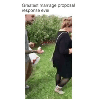@paulstolememes is the best new meme page on Instagram😂 check out his page: Greatest marriage proposal  response ever @paulstolememes is the best new meme page on Instagram😂 check out his page