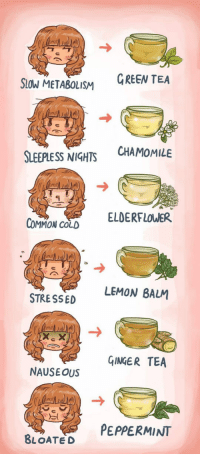 Common, Cold, and Tea: GREEN TEA  SIOW METABOLISM  CHAMOMILE  SLEEPLESS NIGHTS  ELDERFLOWER  COMMON COLD  LEMON BALM  STRE SSED  GINGER TEA  NAUSEOUS  PEPPERMINT  BLOATED <p>Useful Chart About Tea.</p>