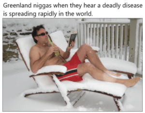 Dank, Memes, and Target: Greenland niggas when they hear a deadly disease  is spreading rapidly in the world. meirl by Behemothism MORE MEMES