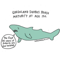 Happy shark week, here's a sad shark fact. sadanimalfacts: GREENLAND SHARKS REACH  MATURITY AT AGE 15o.  the first  e tirs  75 years of  Puberty are  the hardest  Sadanimalfacts.com Happy shark week, here's a sad shark fact. sadanimalfacts