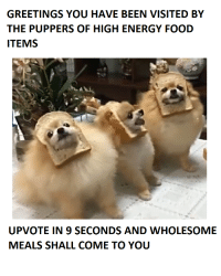 Energy, Food, and Wholesome: GREETINGS YOU HAVE BEEN VISITED BY  THE PUPPERS OF HIGH ENERGY FOOD  ITEMS  UPVOTE IN 9 SECONDS AND WHOLESOME  MEALS SHALL COME TO YOU <p>liek plz for da bred</p>