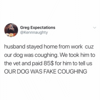 Fake, Memes, and Work: Greg Expectations  @Kennnaughty  husband stayed home from work cuz  our dog was coughing. We took him to  the vet and paid 85$ for him to tell us  OUR DOG WAS FAKE COUGHING never forget