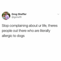 "Dogs, Life, and Memes: Greg Sheffer  @gsheffr  Stop complaining about ur life, theres  people out there who are literally  allergic to dogs I'd rather be a guy with a goatee who does the Borat ""niiiiiiice"" non-ironically than not be able to pet all the dogs."