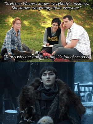 """She Knows, Business, and Hair: """"Gretchen Wieners knows everybody's business.  She knows everything about evervone.""""  That's why her hairais so big. It's full of secrets That's why Bran's hair is so big..."""