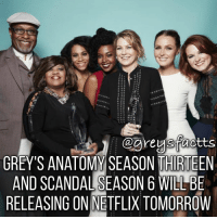 Friends, Memes, and Netflix: GREY'S ANATOMY SEASON THIRTEEN  AND SCANDAL SEASON 6 WILLBE  RELEASING ON NETFLIX TOMORROW Tag Friends! 🔥💃🏻 + Fact: Grey's Anatomy Season thirteen and Scandal season 6 will be releasing on Netflix tomorrow! 🔥💃🏻 + - greysanatomy greys greysabc greysfacts