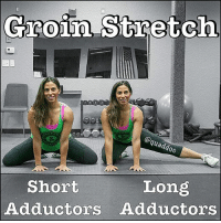 AVOIDING GROIN STRAINS What can you do to help prevent groin strains? Glad you asked! 😆 One of the most common causes of groin strains is improper warm up!!! . Well tonight, @quaddoc is going to show you ✌ two stretches that you can do to help warm up your adductors-groin. They are categorized by: . 🔸Short adductors - this will target higher up into the groin. 🔸Long adductors - you should feel this lower down the inner thigh. . Since we are going to use these for a warm up, we want to do them dynamically, pushing in and put of the stretch by sitting your butt back to your heels while keeping a neutral spine. To see a video of how to do these stretches plus groin strain rehab exercises, make sure to check out @quaddoc's page! MyodetoxOrlando Myodetox: Groin Stretch  oc  Long  Short  Adductors Adductors AVOIDING GROIN STRAINS What can you do to help prevent groin strains? Glad you asked! 😆 One of the most common causes of groin strains is improper warm up!!! . Well tonight, @quaddoc is going to show you ✌ two stretches that you can do to help warm up your adductors-groin. They are categorized by: . 🔸Short adductors - this will target higher up into the groin. 🔸Long adductors - you should feel this lower down the inner thigh. . Since we are going to use these for a warm up, we want to do them dynamically, pushing in and put of the stretch by sitting your butt back to your heels while keeping a neutral spine. To see a video of how to do these stretches plus groin strain rehab exercises, make sure to check out @quaddoc's page! MyodetoxOrlando Myodetox