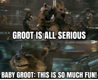 Lol, Memes, and Marvel: GROOT IS ALL SERIOUS  DC/MARVEL COMICSIMOVIES  BABY GROOT THIS IS SO MUCH FUN! Lol 😂😭😂😭 《J-VO》