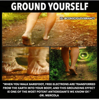 "Energy, Facebook, and Memes: GROUND YOURSELF  :@CONSCIOUSVIBRANCY  ""WHEN YOU WALK BAREFOOT, FREE ELECTRONS ARE TRANSFERRED  FROM THE EARTH INTO YOUR BODY, AND THIS GROUNDING EFFECT  IS ONE OF THE MOST POTENT ANTIOXIDANTS WE KNOW OF.""  -DR. MERCOLA Follow my bro- another fantastic post! ➡️ @consciousvibrancy @consciousvibrancy @consciousvibrancy ""If you want to lift your spirit, you have to ground your soul. This is why your 'sole' is on the bottom of your feet!"" -Alexis Brooks The cure lies in nature. Always has and always will. Go connect with Mother Earth, she'll take you back to your roots. Here are some of the wonderful benefits of earthing: •Inflammation thrives when your blood is thick, and you have a lot of free radical stress, and a lot of positive charges in your body. Grounding effectively alleviates inflammation because it thins your blood and infuses you with negatively charged ions through the soles of your feet. •Grounding helps thin your blood by improving its zeta potential, which means it improves the energy between your red blood cells. Research has demonstrated it takes about 80 minutes for the free electrons from the earth to reach your blood stream and transform your blood. •Being grounded can help relieve inflammation. When grounded, the diurnal rhythm of the stress hormone, cortisol, begins to normalize. Cortisol is connected to your body's stress response and helps control blood sugar levels, regulates metabolism, helps reduce inflammation, and assists with memory formulation. You are a bioelectrical being living on an electrical planet. Your body operates electrically. All of your cells transmit multiple frequencies that run, for example, your heart, immune system, muscles, and nervous system. For many decades, people have increasingly been wearing rubber and plastic-soled shoes that act as a barrier to the Earth's energy, insulating them from electrical contact with the Earth. It's time to reconnect with your roots. Take your shoes off once in a while and absorb the electromagnetic frequencies emanating from the earth. 👣🌍 Consciousvibrancy HolisticAli Grounding Earthing IG 👉🏽 @realrawtruth FACEBOOK-YOUTUBE-SNAPCHAT 👉🏽 @holisticali SUBSCRIBE TO NEW YOUTUBE LINK IN BIO"