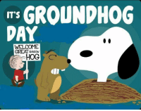 Memes, 🤖, and Groundhog: GROUNDHOG  IT'S  DAY  WELCOME  GREAT HADow  HOG  CT
