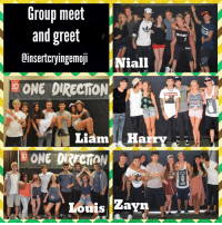 25 best liam memes holm memes you may be cool but memes first memes one direction and group meet and greet oinsertcryingemoji niall id one m4hsunfo