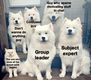 Group projects!: Group projects!
