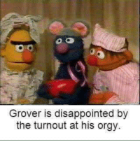 Disappointed, Orgy, and Grover: Grover is disappointed by  the turnout at his orgy.