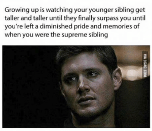 Growing Up, Supreme, and Pride: Growing up is watching your younger sibling get  taller and taller until they finally surpass you until  you're left a diminished pride and memories of  when you were the supreme sibling Please stop growing..
