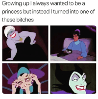 Funny, Growing Up, and Princess: Growing up l always wanted to be a  princess but instead l turned into one of  these bitches Too real @circleofidiots 😅😈
