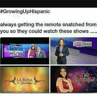 Lmao, Memes, and Watch:  #GrowingUpHispanic  always getting the remote snatched from  you so they could watch these shows  CASOCERRAD0  000  LA ROSA Lmao😂😂 Follow @wtfmexicans👈🏼😂 WTFMEXICANS