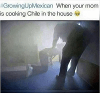 Memes, House, and Chile:  #GrowingUpMexican When your mom  is cooking Chile in the house I can't breaf.