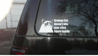 Animals, Family, and Love: Grumpy Cat  doesn't Ilke  your stick  figure family LIKE if you'd want one for your car ! :D Go LIKE -> Animal Memes. if you love animals and laughing :)