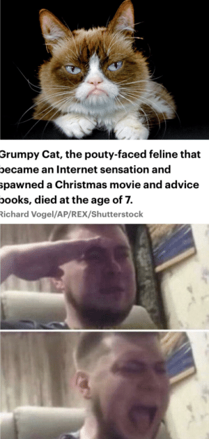 😿 Have some damn respect 😿: Grumpy Cat, the pouty-faced feline that  oecame an Internet sensation and  spawned a Christmas movie and advice  books, died at the age of 7.  ichard Vogel/AP/REX/Shutterstock 😿 Have some damn respect 😿
