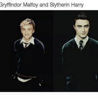Gryffindor, Memes, and Slytherin: Gryffindor Malfoy and Slytherin Harry If I GET TO 20K TONIGHT I WILL BE GIVING ONE OF MY FOLLOWERS A SHOUTOUT