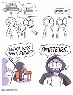 A meme I had in the back of my mind for a while.: GSSLOOKS  SOOITHERENT  ONALIBROWSERSKNOW  AMATEURS.  THAT, PUNK?  486  OWLTURD.CoM A meme I had in the back of my mind for a while.