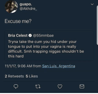 Blackpeopletwitter, Cum, and Smh: guapo.  @Akhdre  Excuse me  Bria Celest @55mmbae  Tryna take the cum you hid under your  tongue to put into your vagina is really  difficult. Smh trapping niggas shouldn't be  this hard  11/1/17, 9:06 AM from San Luis, Argentina  2 Retweets 5 Likes <p>This is unacceptable (via /r/BlackPeopleTwitter)</p>