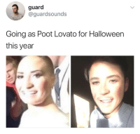Justice for Poot! RIP in pieces sweet baby 💕 @guardsounds: guard  @guardsounds  Going as Poot Lovato for Halloween  this year Justice for Poot! RIP in pieces sweet baby 💕 @guardsounds