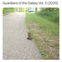 Memes, Guardians of the Galaxy, and 🤖: Guardians of the Galaxy Vol. 3 (2020) https://t.co/pPhoyA813h