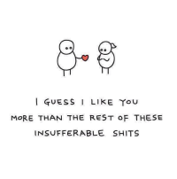 i like you: GUESS I LIKE YOU  MORE THAN THE REST OF THESE  INSUFFERABLE SHITS