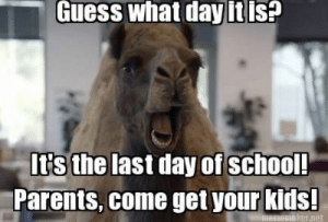 last day of school meme - Google Search | Laugh Out Loud | Pinterest ...: Guess what day it is?  It's the last day of school!  Parents, come get your kids!  Srer net last day of school meme - Google Search | Laugh Out Loud | Pinterest ...