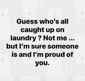 Meme dumpling: Guess who's all  caught up on  laundry ? Not me...  but I'm sure someone  is and I'm proud of  you. Meme dumpling