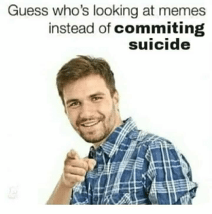 Memes, Guess, and Suicide: Guess who's looking at memes  instead of commiting  suicide Just keep looking