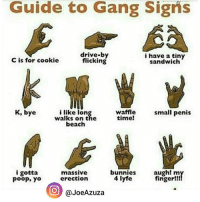 K, bye 😂😂 (Via @JoeAzuza): Guide to Gang Signs  drive-by  i have a tiny  flicking  C is for cookie  sandwich  K, bye  waffle  i like Ion  small penis  time!  walks on the  beach  i gotta  massive  augh! my  bunnies  finger!!  4 lyfe  erection  poop, yo  O (a JoeAzuza K, bye 😂😂 (Via @JoeAzuza)