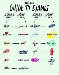 Juice, Memes, and Soda: GUIDE TO STA(NS  IF YOU HAve REMvE  IF You HAve  REMoVE  StaINS  THiS  STAINS  THiS  ORASS  VINeGAR DEODORANt  WHite wiNe SWEAt  Lemox witc  LemoN Juice  GReASe  SoDA  LIAStick.  BABI  Wipes  ㅡㅡㅡㅡ  DROGEN  INK  WHite CHALK MAKe-Uf  SHAVING  CReAM  BAKINGSoDA