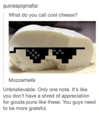 Puns, Cool, and Only One: guineapigmafia:  What do you call cool cheese?  Mozzarhella  Unbrielievable. Only one note. It's like  you don't have a shred of appreciation  for gouda puns like these. You guys need  to be more grateful https://t.co/Jdg2HkBYhW