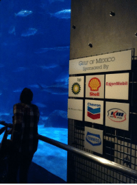 If this isnt ironic, I dont know what is: GULF OF MEXICO  Sponsored By  bp  ExxonMobil  Shell  Chevron  TENNECO If this isnt ironic, I dont know what is