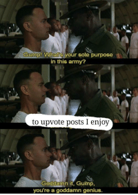 Sort by new army: Gump! What's your sole purpose  in this army?  to upvote posts I enjoy  Goddamn it, Gump,  you're a goddamn genius. Sort by new army