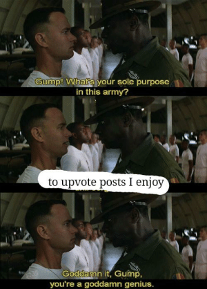 Sort by new army by Redfamous35 MORE MEMES: Gump! What's your sole purpose  in this army?  to upvote posts I enjoy  Goddamn it, Gump,  you're a goddamn genius. Sort by new army by Redfamous35 MORE MEMES