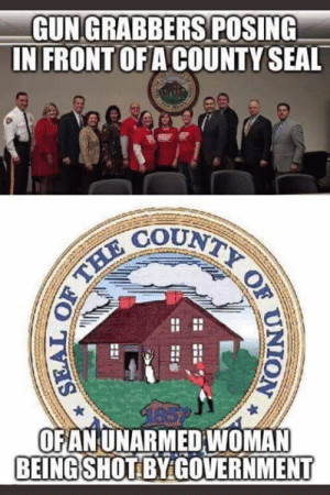 Reality is stranger than fiction.: GUN GRABBERS POSING  IN FRONT OFA COUNTY SEAL  COUNT  2  OFANUNARMED WOMAN  BEINGSHOT BY GOVERNMENT Reality is stranger than fiction.