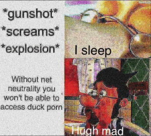 """Access, Duck, and Porn: """"gunshot  screams  explosion* I sleep  Without net  neutrality you  won't be able to  access duck porn  ugh mad"""