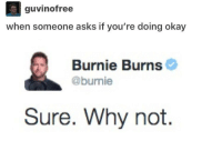 5 likes and I'll dick kick the asshole who sits in front of me in Spanish ≪sam≫: guvinofree  when someone asks if you're doing okay  Burnie Burns  @burnie  Sure. Why not. 5 likes and I'll dick kick the asshole who sits in front of me in Spanish ≪sam≫