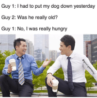 Dogs, Hungry, and Memes: Guy 1: I had to put my dog down yesterday  Guy 2: Was he really old?  Guy 1: No, l was really hungry Snapchat: DankMemesGang