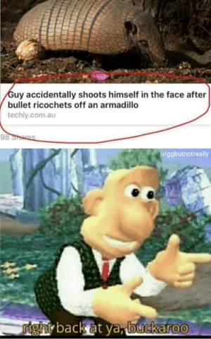 Meme, Back, and Com: Guy accidentally shoots himself in the face after  bullet ricochets off an armadillo  techly.com.au  98 Shores  u/ggbutnotreally  right back at ya, buckaroo First meme.