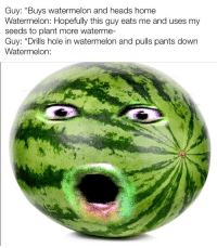 Watermelone: Guy: *Buys watermelon and heads home  Watermelon: Hopefully this guy eats me and uses my  seeds to plant more waterme-  Guy: *Drills hole in watermelon and pulls pants down  Watermelon:
